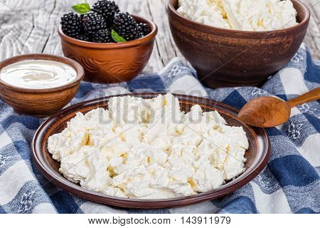 Fresh organic cottage cheese on clay dish and in pot on kitchen towel natural cream in cup earthenware bowl with blackberry on background view from above close-up