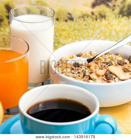 Healthy Breakfast Shows Organic Meal And Food