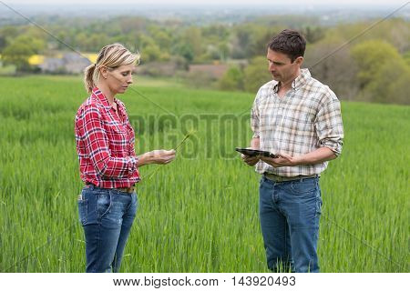 Female farmer speaking and examine with agronomist technician
