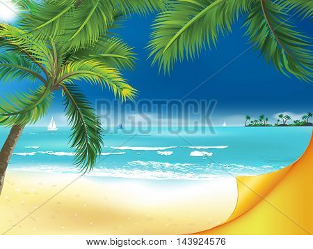 Summer seaside background with beach and palm trees.