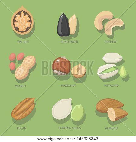 Nuts icon set. Organic food, Natural nutrition hazelnut, pistachio