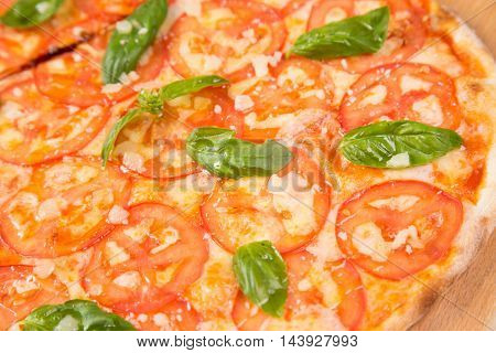 hot pizza with tomatoes and basil isolated on white background