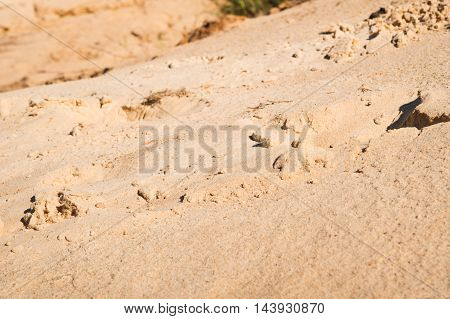sand on a beach near a sea