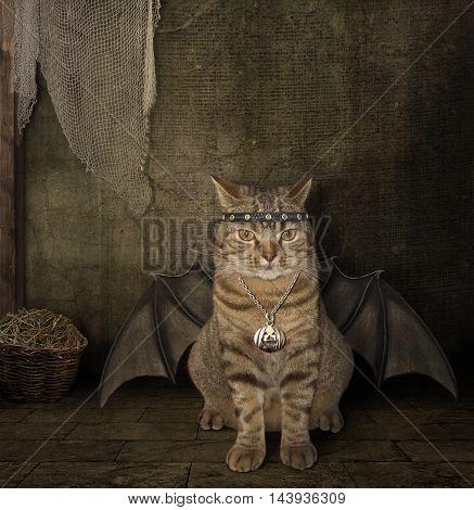 A cat has a wings. It looks like a bat.