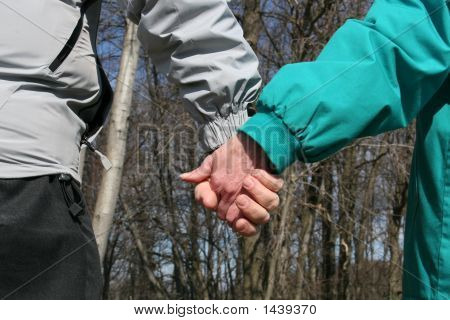 Senior Couple Holding Hands In Woods