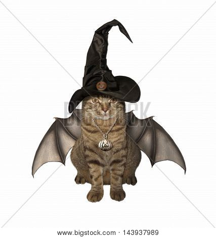 A cat in a hat has wings on the white background.. It looks like a bat.