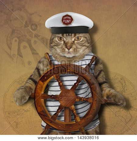 The cat was a ship captain. He stands at the helm of the ship.