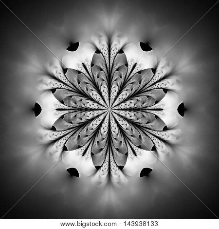 Abstract flower mandala on black background. Intricate symmetrical pattern in black and white colors. Fantasy fractal design for posters postcards wallpapers or t-shirts. Digital art. 3D rendering.