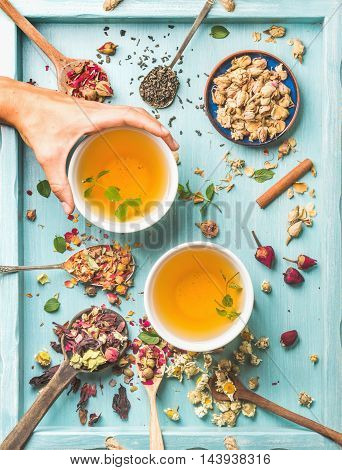 Two cups of healthy herbal tea with mint, cinnamon, dried rose and camomile flowers in spoons, human's hand taking cup, blue background, top view