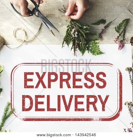 Worldwide Shipping Delivery Express Graphic Concept