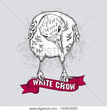 isolated white crow sitting on a red ribbon. It can be used as a greeting card or print on fabric. vector illustration