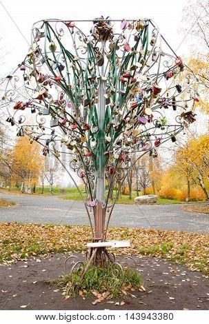 Tree With Honeymooners Locks In Park