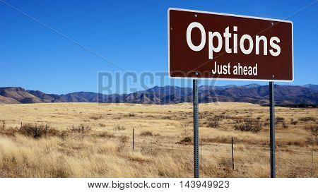 Options road sign with blue sky and wilderness