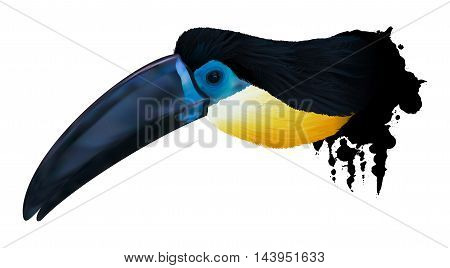 An ilustration of a channel-billed toucan with spots from paint.