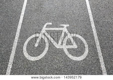 Bike Lane Path Way Cycle Bicycle Road Traffic Town
