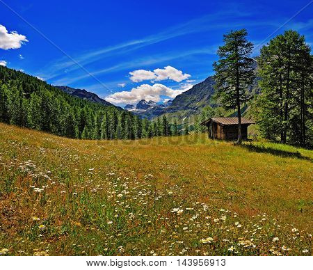 meadow with old house in Alpien mountains with view on Granta Parey