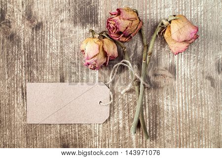 Old roses and blank paper tag. Top view with copy space.