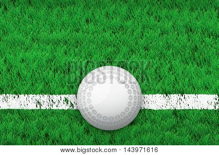 White line and hockey ball on grass field. Closeup sport background. Editable Vector illustration Isolated on background.