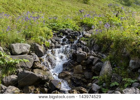river at mountain to plateau with green nature