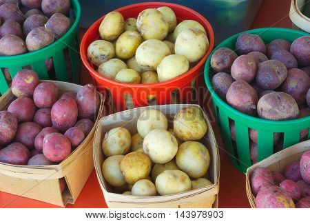 red and white potatoes at the market
