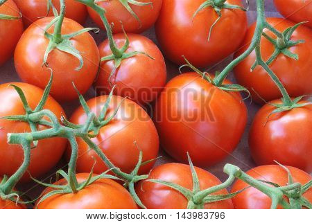 fresh red tomatoes at the market full view