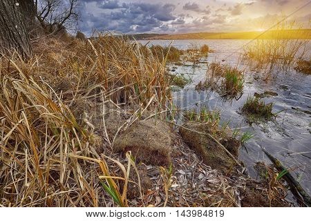 Cloudy weather over the lake at sunset. Dry reed at foreground. Dramatic sky