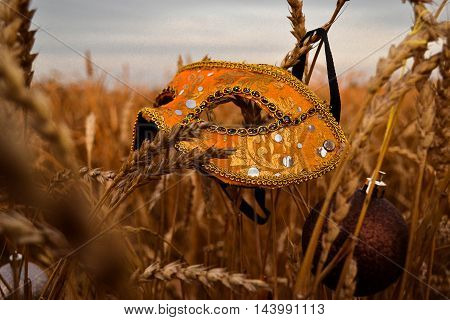 an elegant carnival mask in Golden wheat field