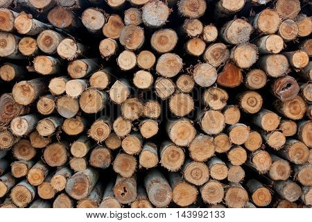 A pile of wood for construction, For background and texture.