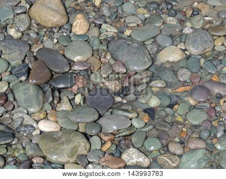 wet stones on the river bank summer