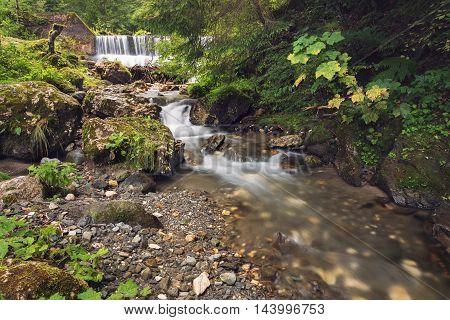 Mountain stream waterfall, in transylvanian mountains, Romania