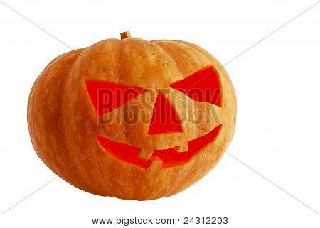Halloween Jack O Lantern Lighted Inside