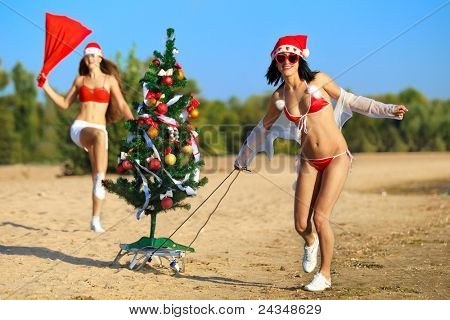 Two Sexy Santas with Christmas tree at the tropical beach