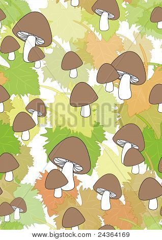 Autumn leaves and mushrooms