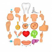 Body Parts Icons Set. Cartoon Set Of 25 Body Parts Vector Icons For Web Isolated On White Background poster