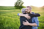 An Adult Hipster Son With His Senior Father On A Walk In Nature At Sunset, Hugging. Copy Space. poster