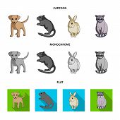 Puppy, Rodent, Rabbit And Other Animal Species.animals Set Collection Icons In Cartoon, Flat, Monoch poster