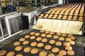 Cakes On Automatic Conveyor Belt Or Line, Process Of Baking In Confectionery Factory. Food Industry, poster