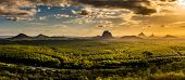 Panoramic view of Glass House Mountains at sunset visible from Wild Horse Mountain Lookout, Australi poster