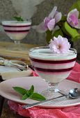 Panna Cotta. Layered Vanilla Milk Berry Dessert. Pannacotta In Glass With Strawberry Jello. Traditio poster
