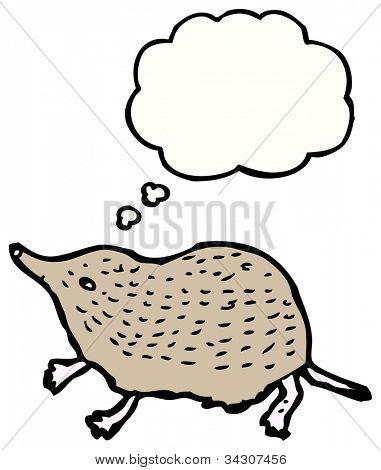 shrew cartoon
