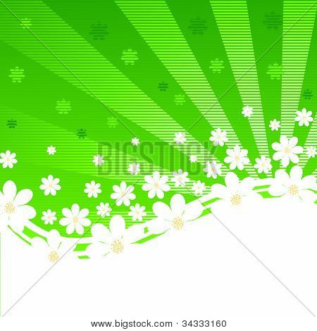 Vector Illustration Of A Green Striped Background With Daisies And Sun Rays
