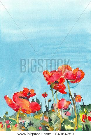 Original Watercolor Poppy Flower Background