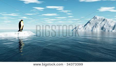 Pingüino antártico hielo - arte digital