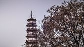 Temple Of The Six Banyan Trees . Liurong Temple  A Buddhist Landmark Temple In Guangzhou . Chinese P poster