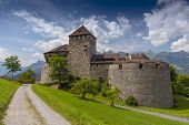 Vaduz Castle, The Palace And Official Residence Of The Prince Of Liechtenstein. poster