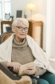Elegant Senior Woman In Glasses Is Relaxing At Her Comfortable Flat. She Is Sitting On The Leather A poster