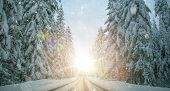 Scenic Winter Road Wonderland. Scenic Icy Highway Trough Dense Spruce Forest Covered By Fresh Snow. poster