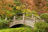 A Wooden Arch Bridge in a Garden