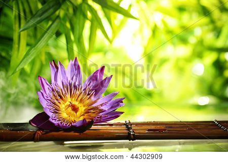 Spa still life with lotus float on water,bamboo background.