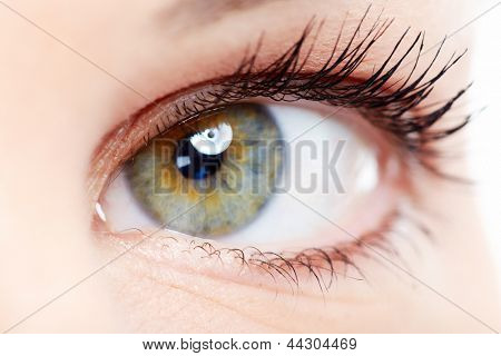Beautiful young woman eye closeup. Vision background.